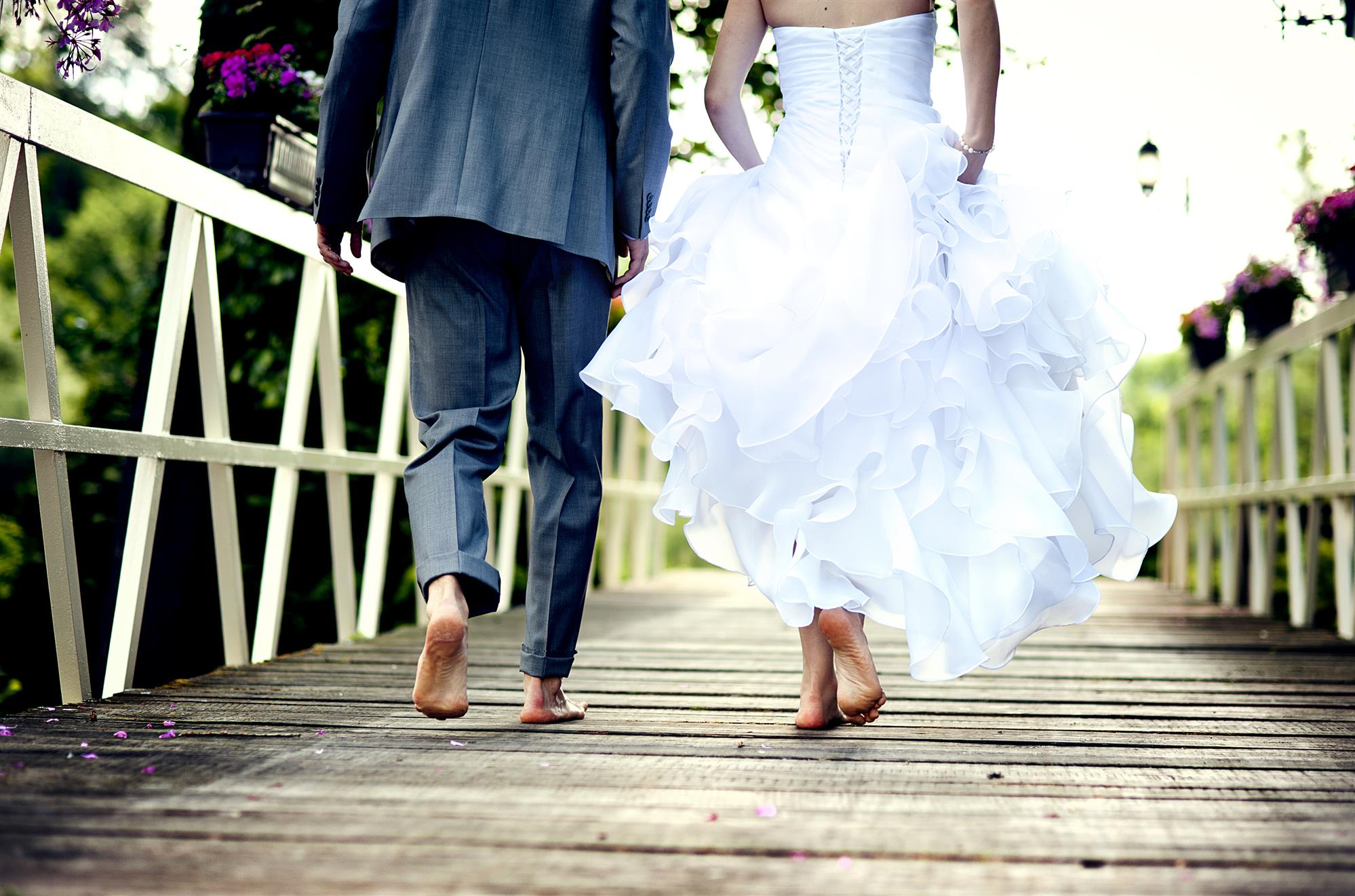 Travel and Wedding Insurance