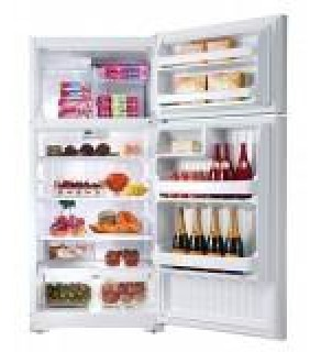 GE 17 Cu. Ft. GTE17GBC WW Top Freezer Refrigerator 220 Volts