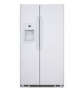 GE 22 cu. ft. GSE22KEBF WW SIDE BY SIDE refrigerator 220 Volts