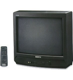 "Sony 14"" Multisystem TV"