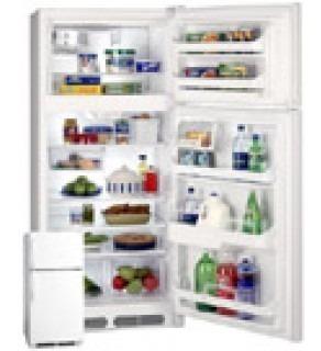 Frigidaire 18Cft Fgtg18V7Aw Top Mount Refrigerator 220 Volts