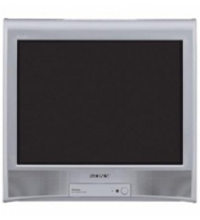 "Sony 21"" Multi-System TV Wega for 110-220 Volts"