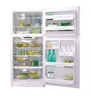 Ge 18 Cu.Ft Gte18Hbw-Ww Top Freezer Refrigerator 220 Volts