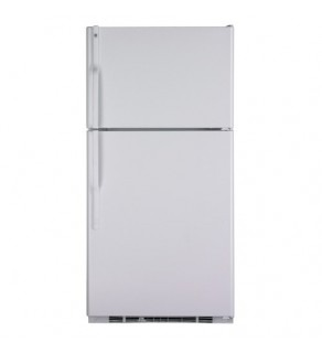 Ge 25 Cu.Ft Gte25Dbt-Ww Top Mount Refrigerator 220 Volts