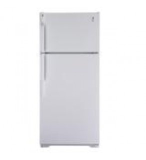 GE 16 cu. ft. GTE16CBC WW Top Freezer Refrigerator 220 Volts