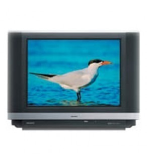 "Hitachi - 29"" Stereo Pure FlatScreen Full Multisystem PLASMA LOOK TV"