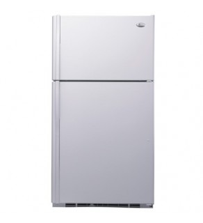 Ge 22 Cu.Ft. Pte22Sbtss Profile Top Mount Refrigerator 220 Volts